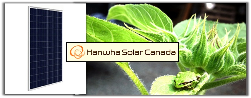 hanwha-solar-panels-canada-off-grid-grid-tie-vancouver-island-bc.png