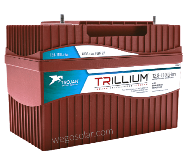 lithium-battery-12v-trillium-tr-110-110-amp-hour-lithium-ion-battery-.png