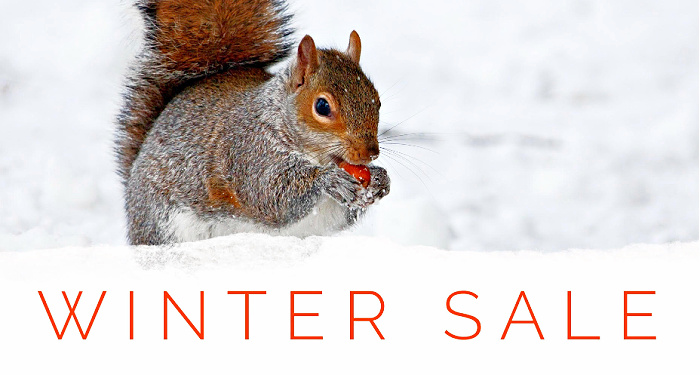 winter-sale-wegosolar.jpg